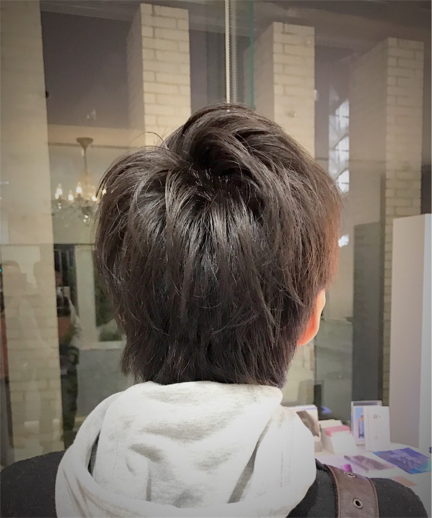 f:id:yusuke_tomura:20161221131001j:image