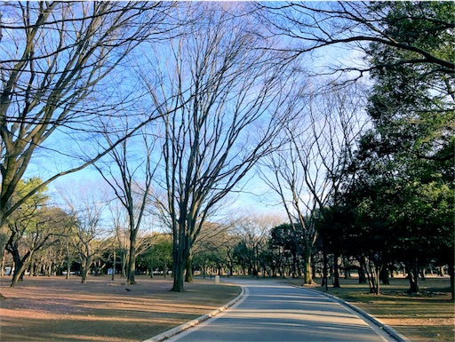 f:id:yusuke_tomura:20170124230034j:image