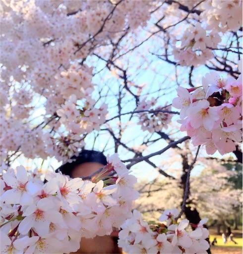 f:id:yusuke_tomura:20170406121326j:image