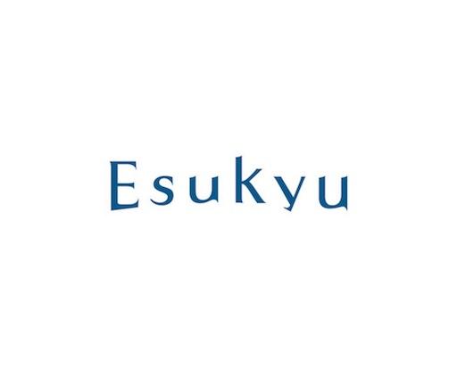 f:id:yusuke_tomura:20170520233018j:image