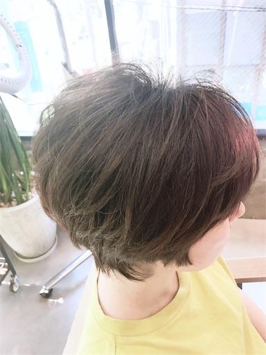f:id:yusuke_tomura:20170609151023j:image