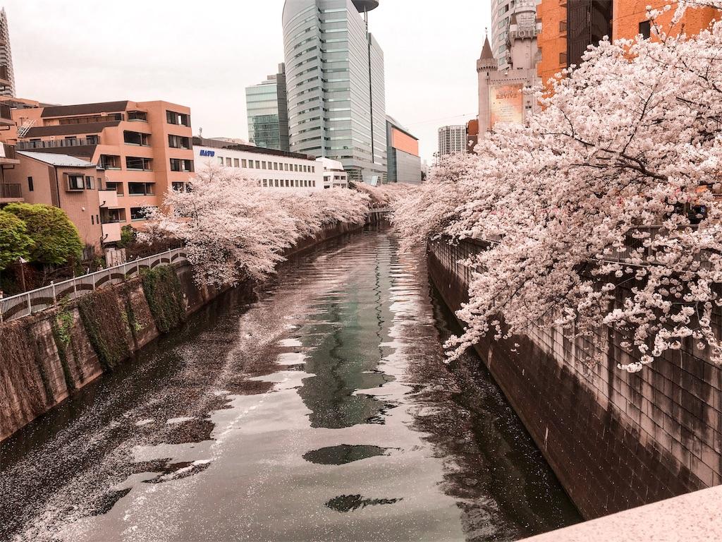 f:id:yusukefujita:20170410194244j:image