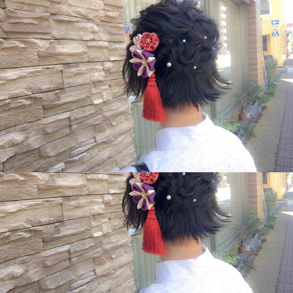 f:id:yusukefujita:20170922181807j:plain