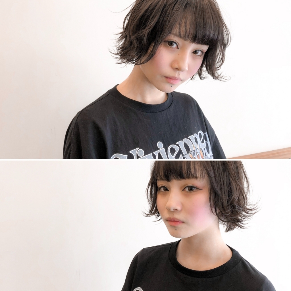 f:id:yusukefujita:20180202114040j:plain