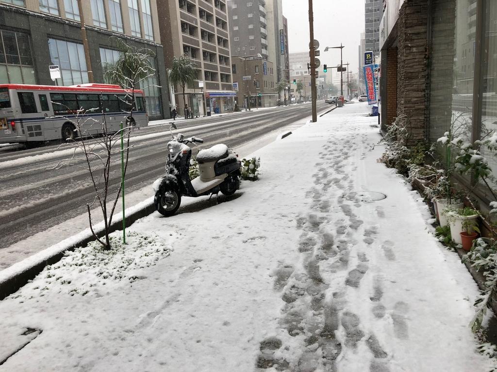 f:id:yusukefujita:20181208112405j:plain