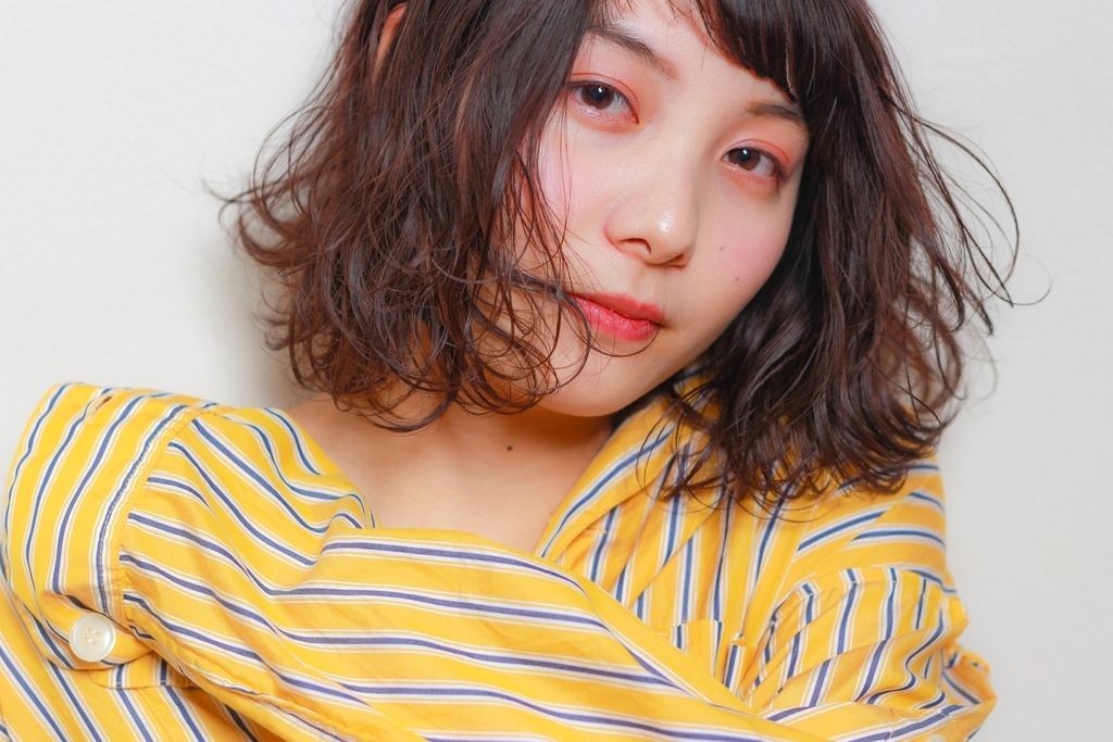 f:id:yusukefujita:20190123172155j:plain
