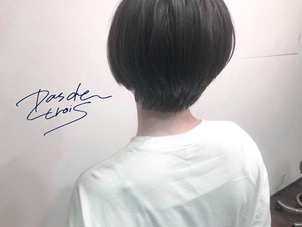f:id:yusukefujita:20190527160831j:image