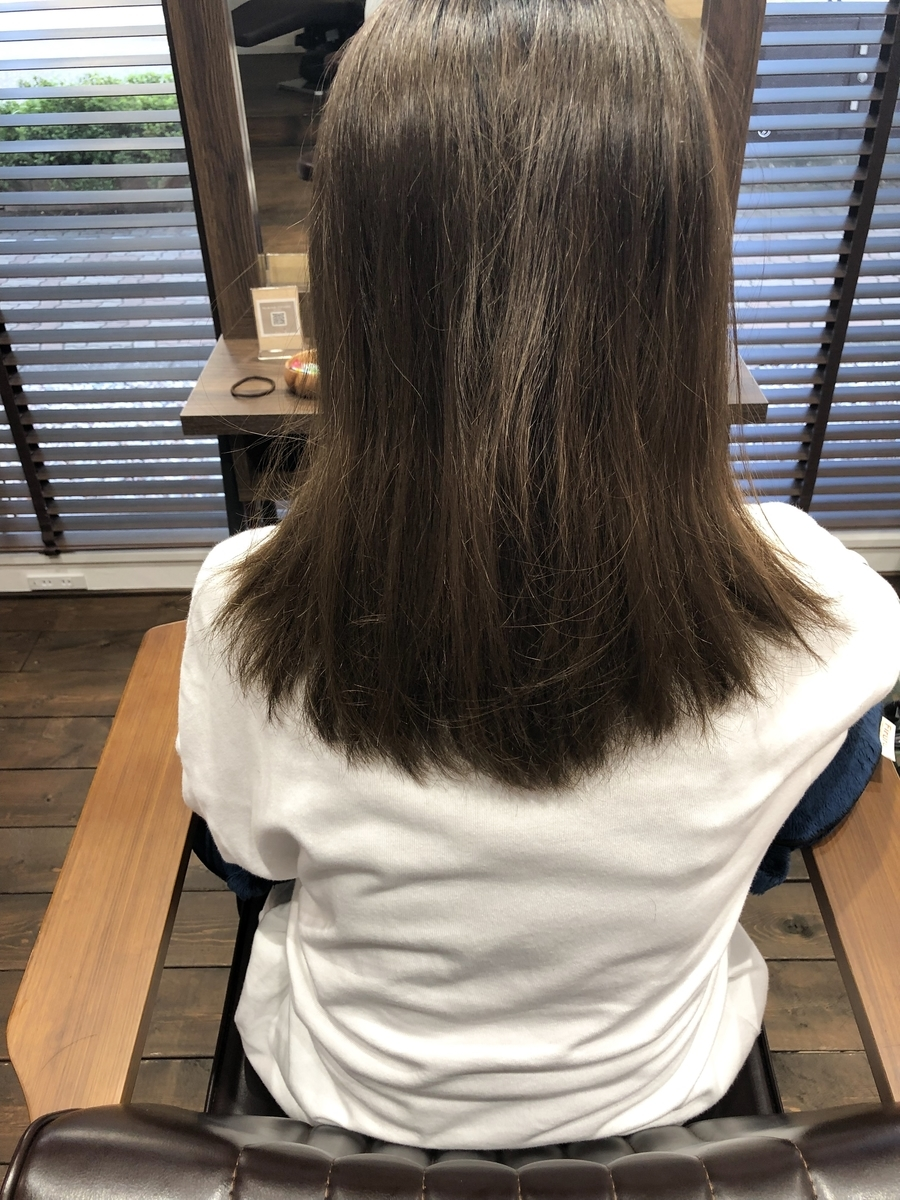 f:id:yusukefujita:20190620201140j:plain