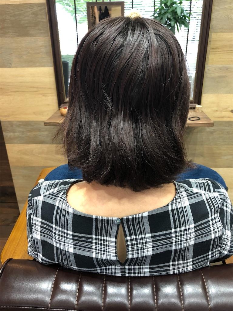 f:id:yusukefujita:20190703224525j:image