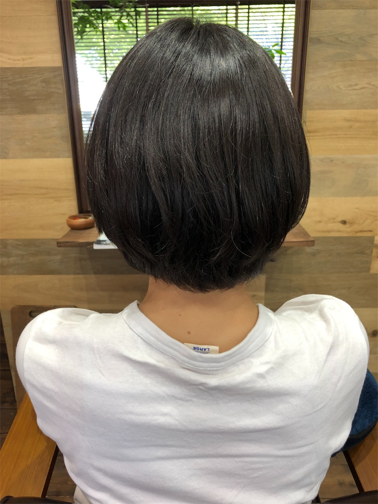 f:id:yusukefujita:20190708233629j:image