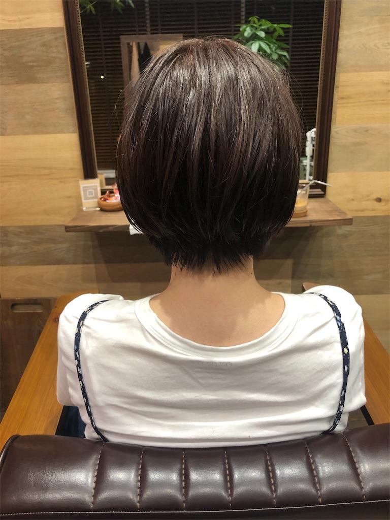 f:id:yusukefujita:20190724092819j:image