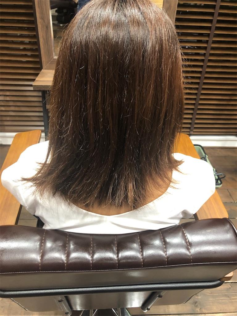 f:id:yusukefujita:20190820220226j:image