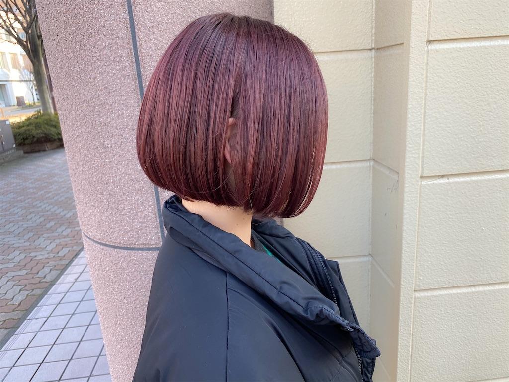 f:id:yusukefujita:20200206120939j:image