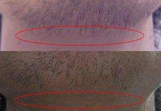 f:id:yuta-celestial:20080501054953j:image