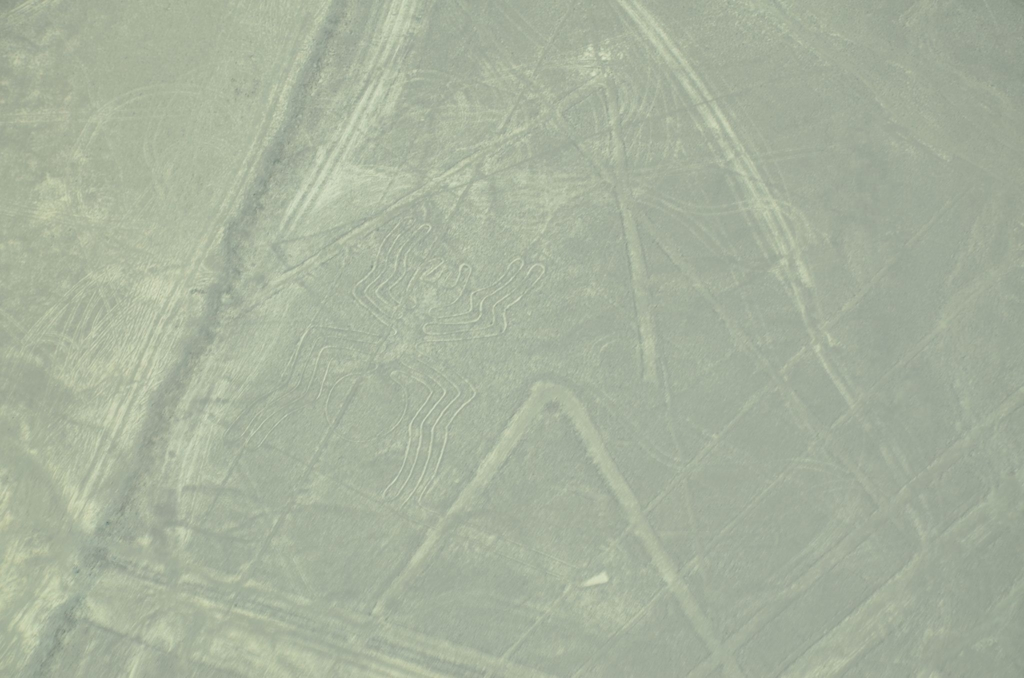 f:id:yuta-celestial:20130928220956j:image:w360