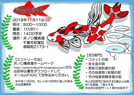 f:id:yutakakingyo:20181016133950j:plain