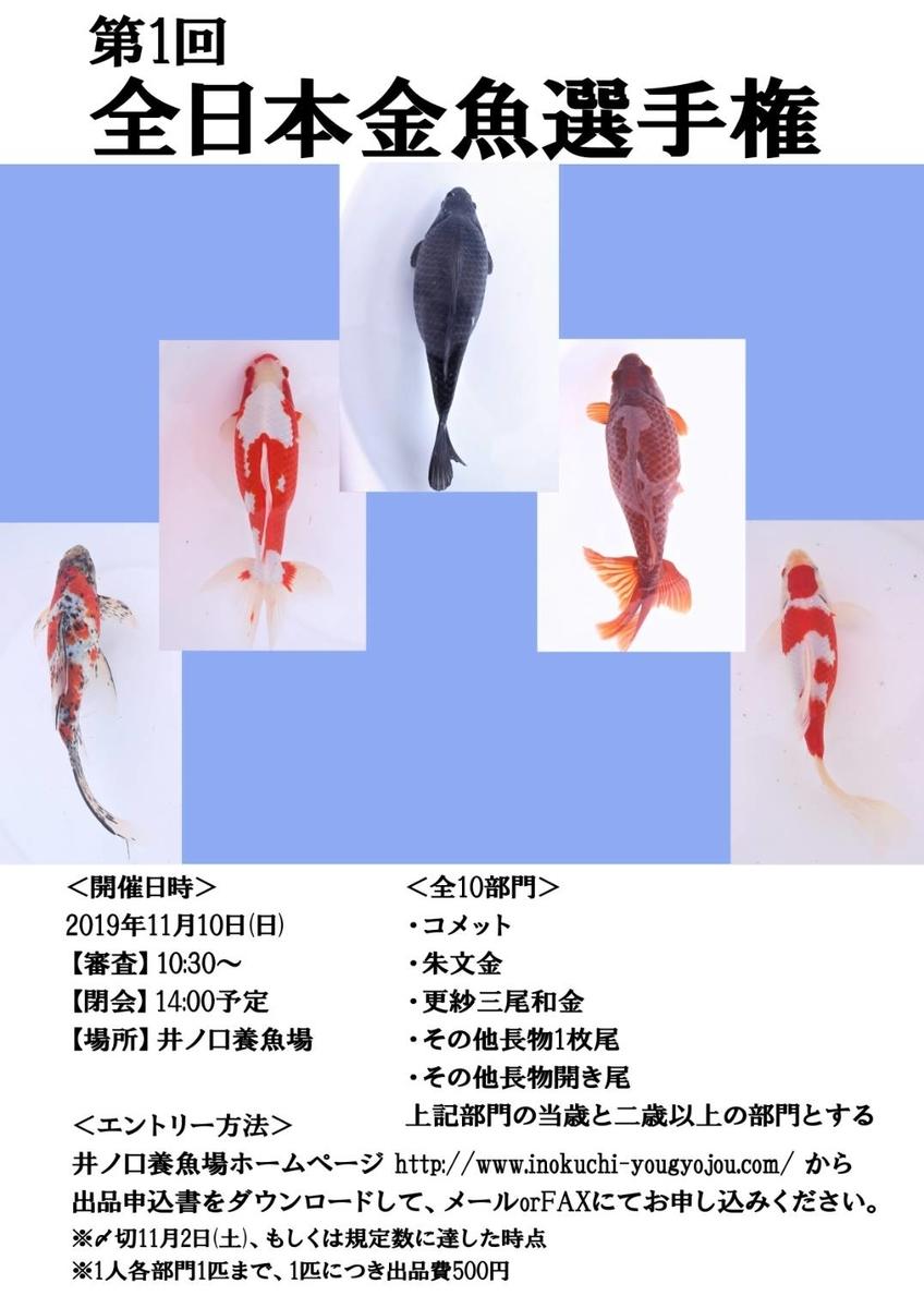 f:id:yutakakingyo:20191009022619j:plain