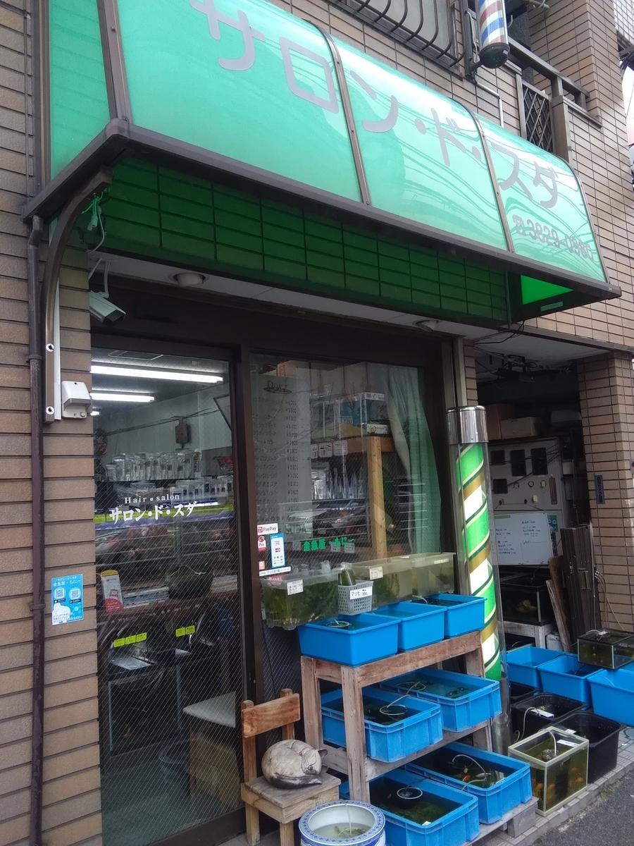 f:id:yutakakingyo:20191214020530j:plain