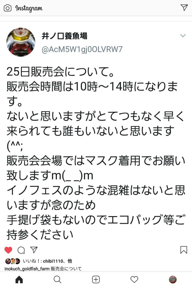 f:id:yutakakingyo:20201022104628p:plain