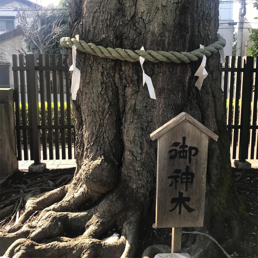 f:id:yutakasakaeru:20210225120440j:image