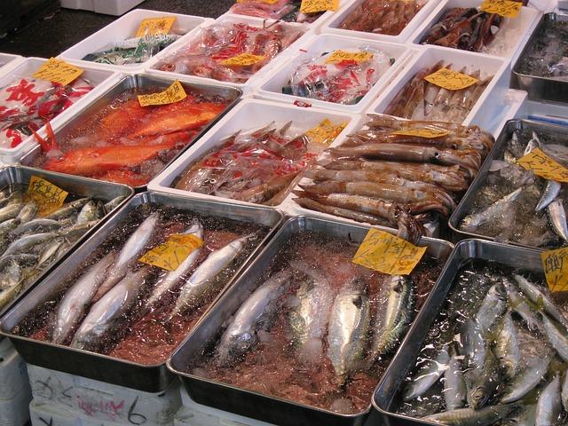 いろんな魚の写真