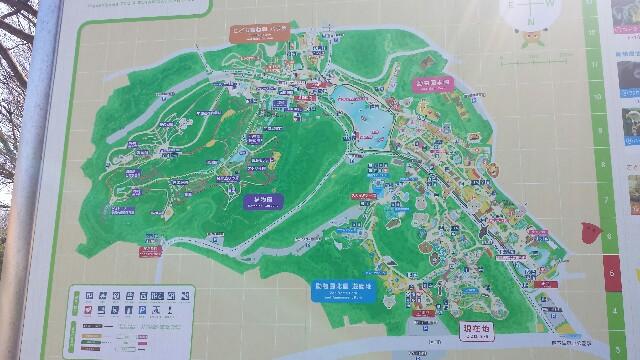 東山動植物園 地図 写真