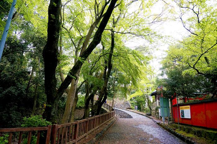 犬山城 入口から天守閣までの道 写真