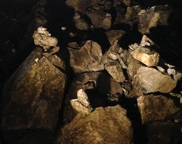 奥多摩 日原鍾乳洞 中の写真