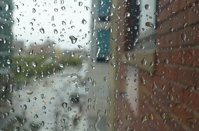 雨粒で視界がはっきりしない