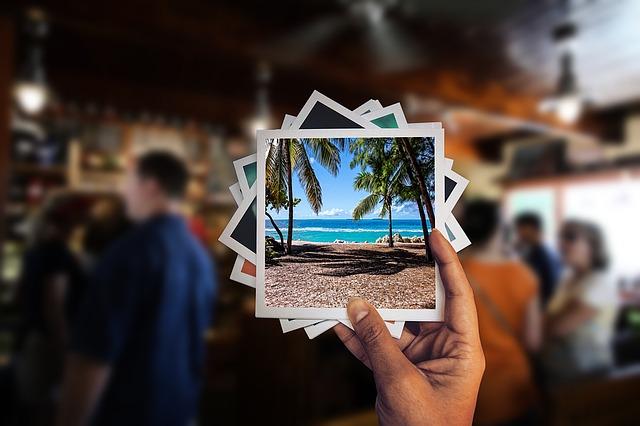 外国のレストランで写真を眺める