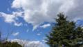 [風景]今日も青空