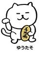 憎めないネコ編集2