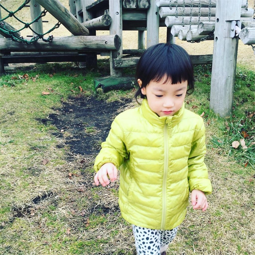 f:id:yutayuta-sumomoko:20161004093035j:image