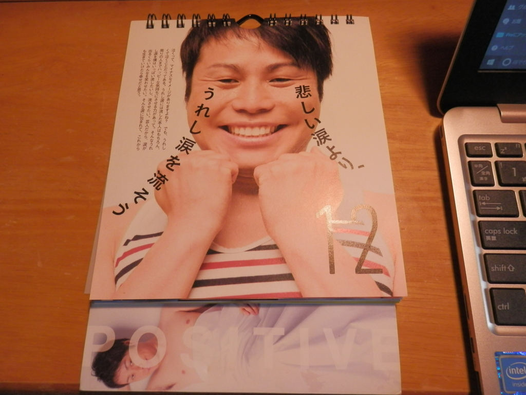 f:id:yutayuta-sumomoko:20161213124309j:plain