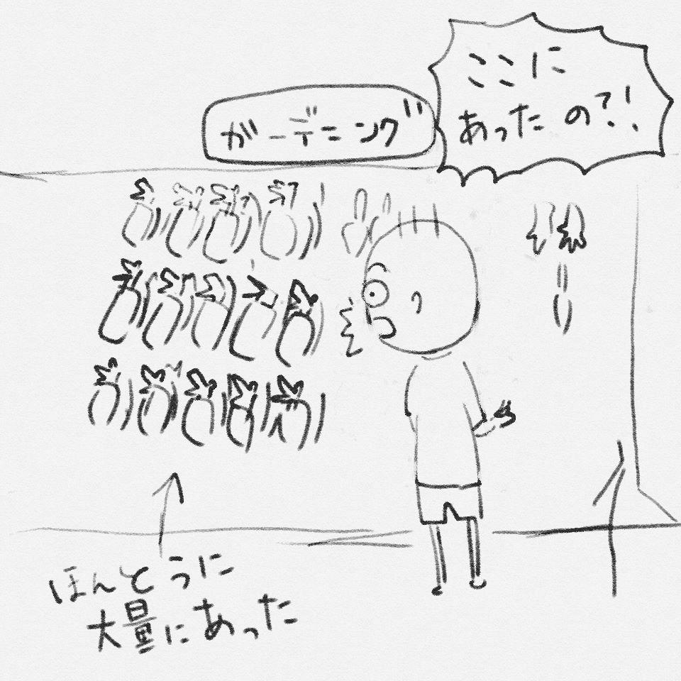 f:id:yutikoha:20170717224304j:plain