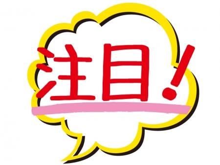 f:id:yuto34:20171231225025j:plain