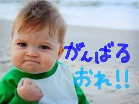 f:id:yuto_net:20180524110221j:plain