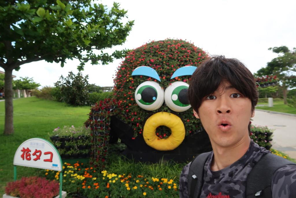 f:id:yutochiba:20180610083357j:plain