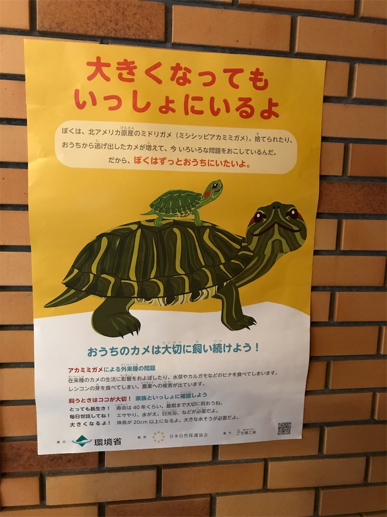 f:id:yutori_style:20170919001548j:image