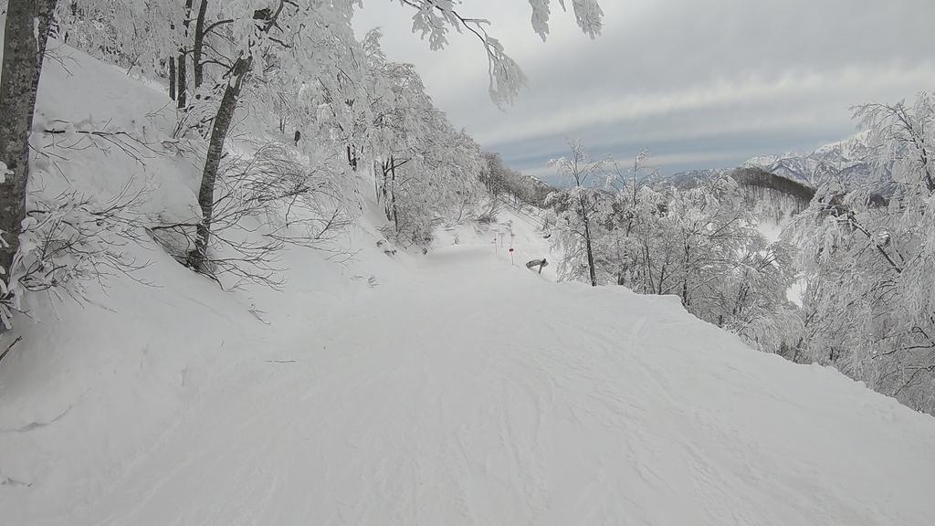 稗田山林間コース