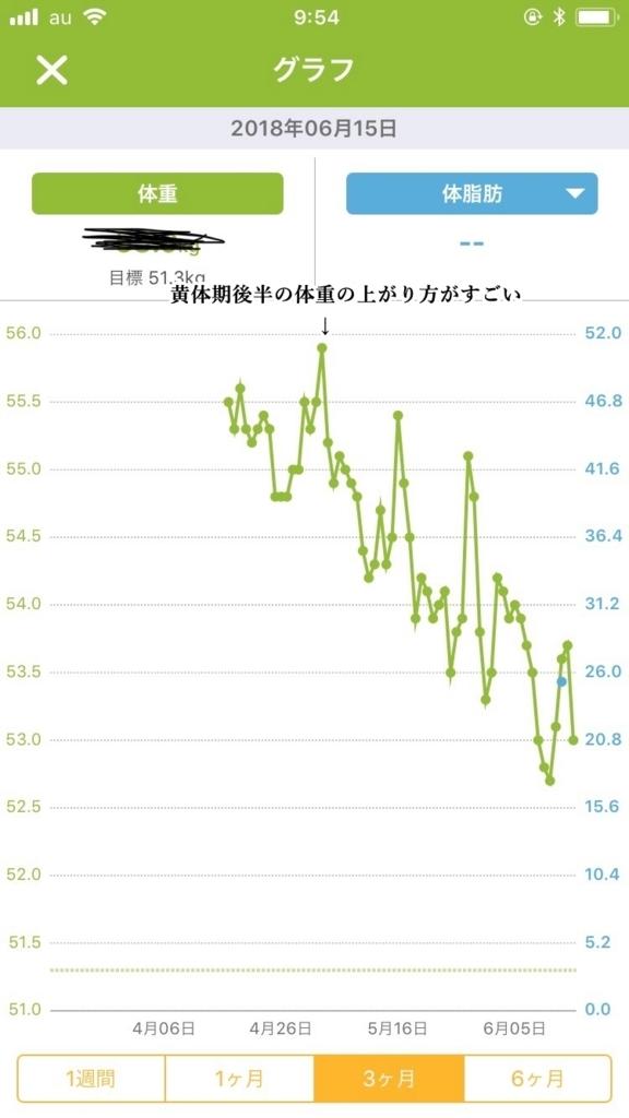 f:id:yutoriito:20180615100744j:plain