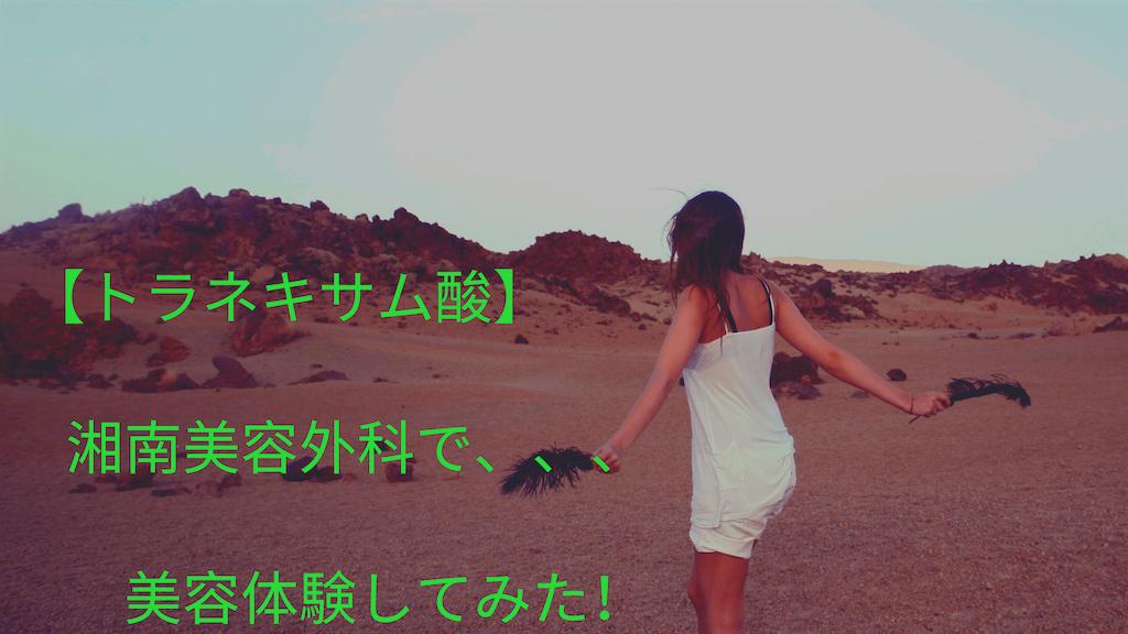 f:id:yutorilife276:20190406130217p:image