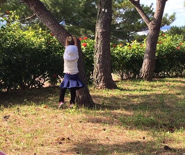 f:id:yutorogikun:20180219205339j:plain