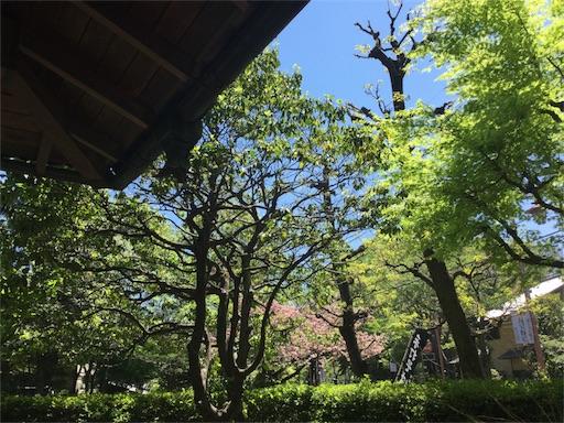 f:id:yutosuna:20170605101514j:image