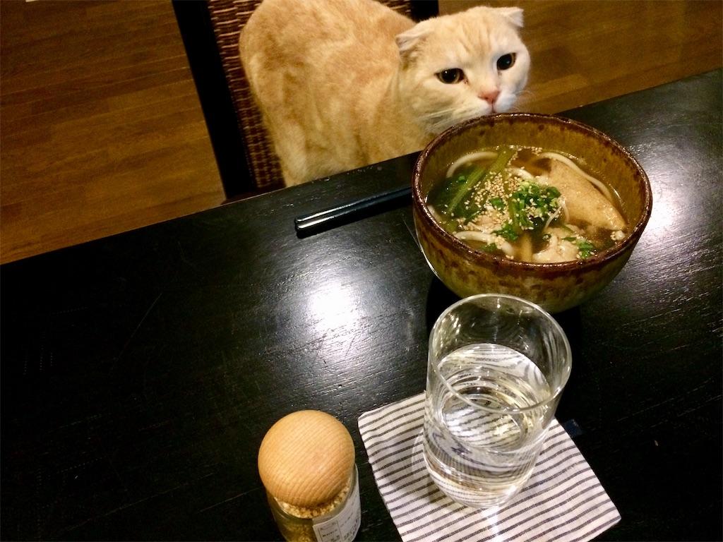 f:id:yutosuna:20181219063557j:image