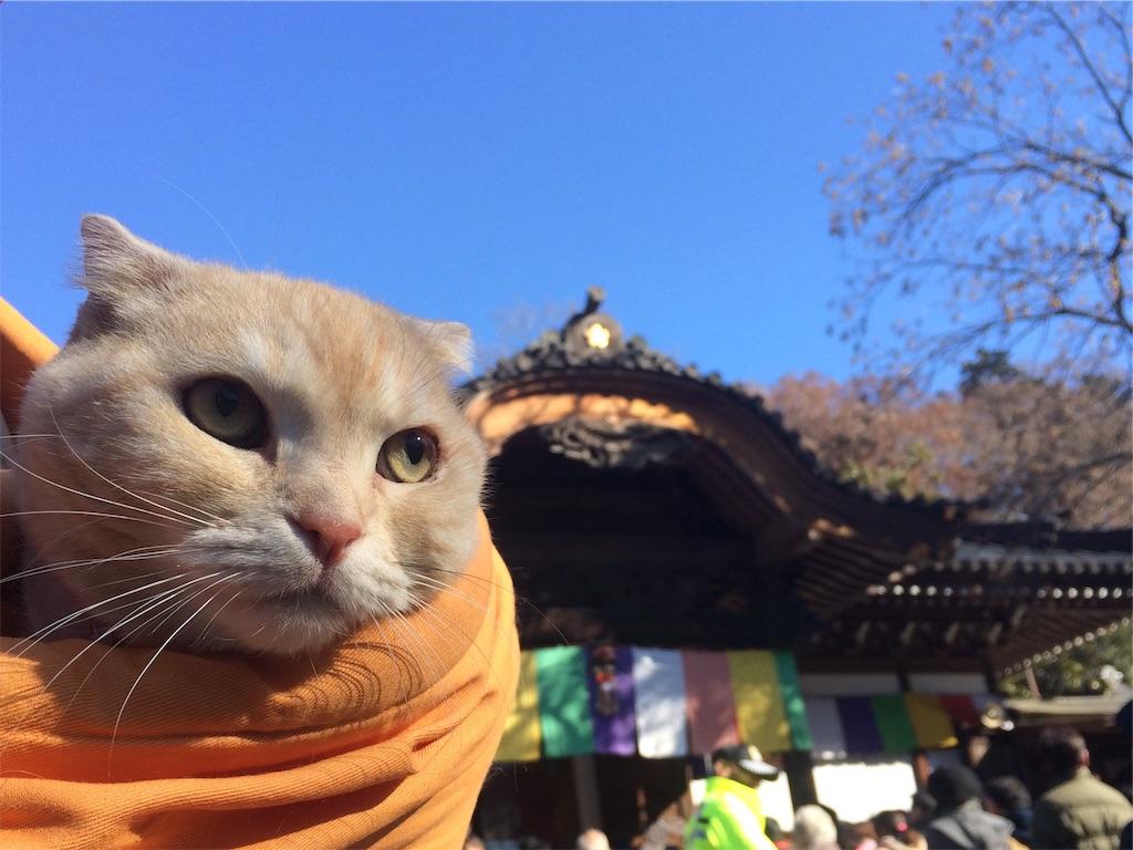 f:id:yutosuna:20190101114343j:image