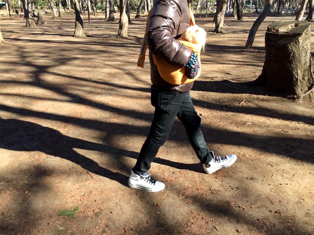 f:id:yutosuna:20190327205443j:image