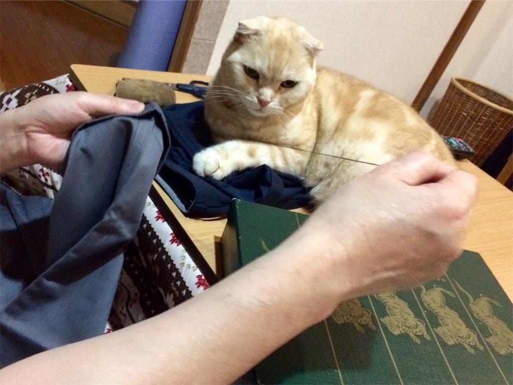 f:id:yutosuna:20190410063403j:image