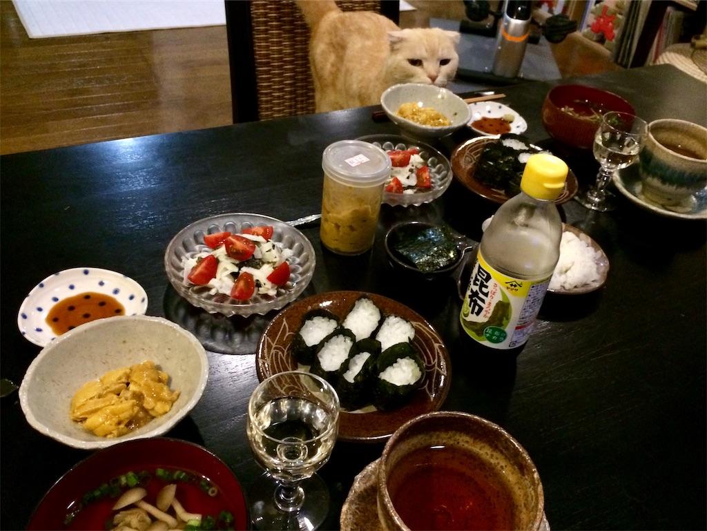 f:id:yutosuna:20190521063504j:image