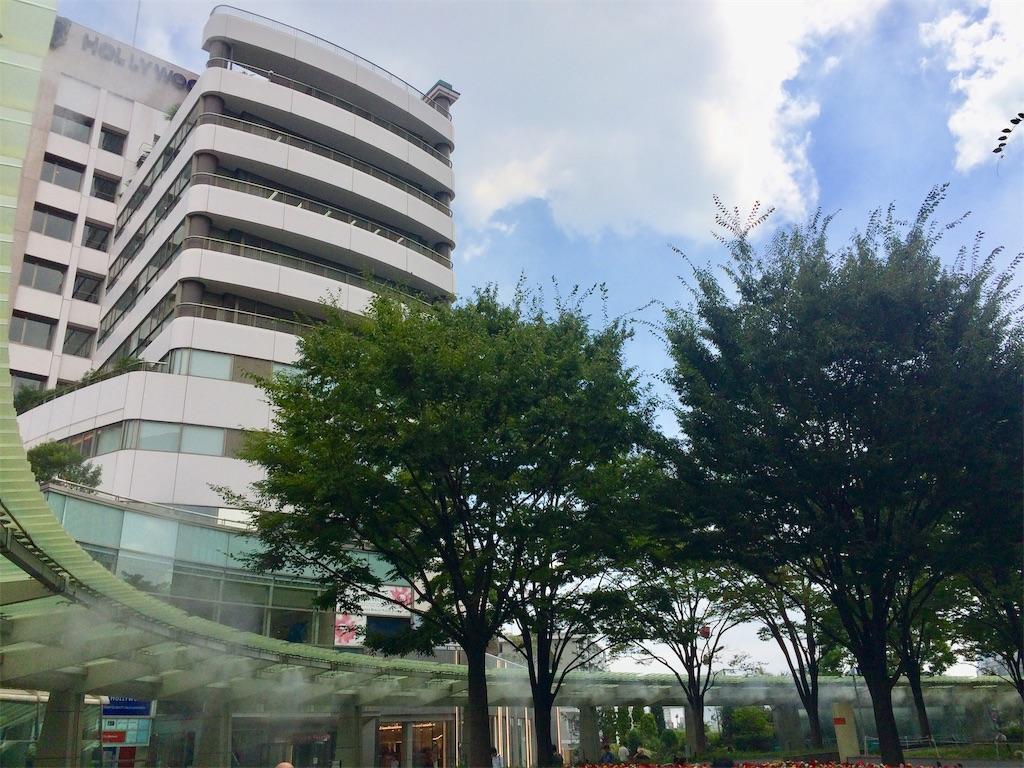 f:id:yutosuna:20190906181306j:image